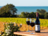 Wine Route – Nelson