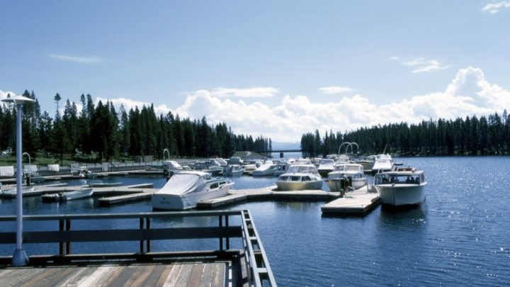 bridge bay marina, yellowstone