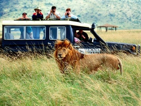 Africa's Top 50 Safari Parks