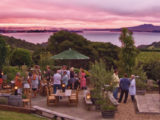 A Dozen Great Reasons to Visit Waiheke Island