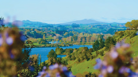 Lake Karapiro Lodge & Blue Spring
