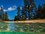 Exploring Norfolk Island's Adventurous Spirit